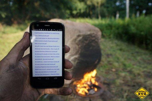 Необычный Wi-Fi камень в лесу