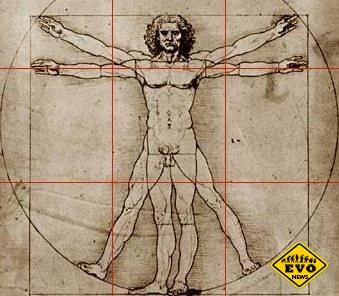 Бесполезные части человеческого тела (Статья)