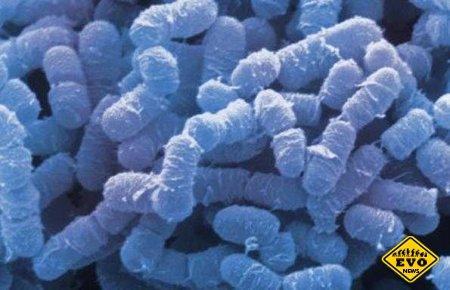Болезнь что превращает тело в газ (Интересный факт)