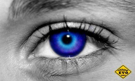 Человеческий прибор ночного видения (интересный факт)