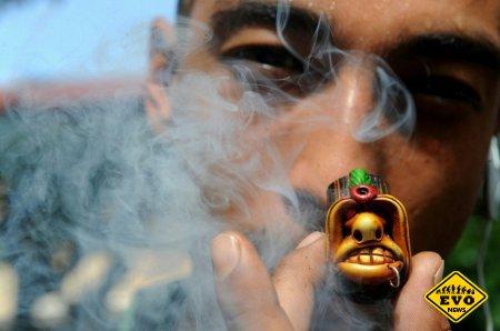 Интересная новость о поджоге 50 тонн марихуаны