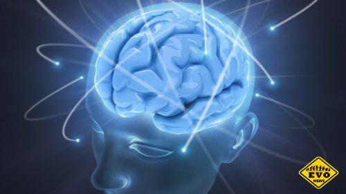 9 фактов об работоспособности мозга за сутки