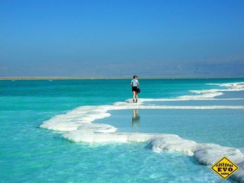 Факт о том почему Мертвое море так называется?
