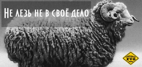 История для тех кто любит лесть в чужие дела)