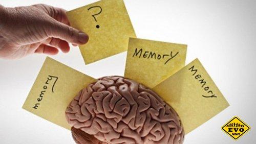 Советы по тренировки памяти, как развить память