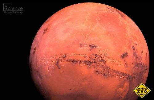 ГМ-бактерии построят марсианские базы
