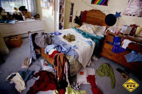 Самыми грязные вещи в доме (Интересные факты)