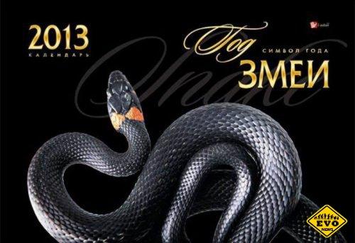 2013 год Змеи и что ожидать от этого года