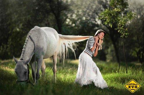 Лошади способны узнавать друг друга по ржанию