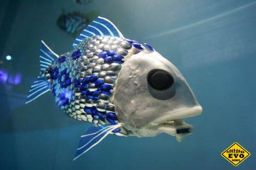 Рыба-робот на страже экологии (Hi-tech новость)