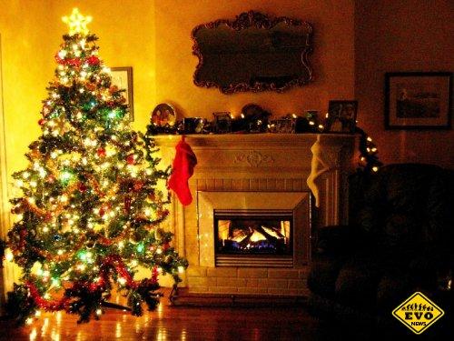 Откуда появились традиция наряжать ёлку на Новый год?