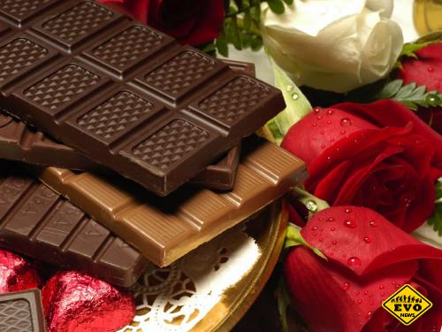 Открыты новые полезные свойства горького шоколада
