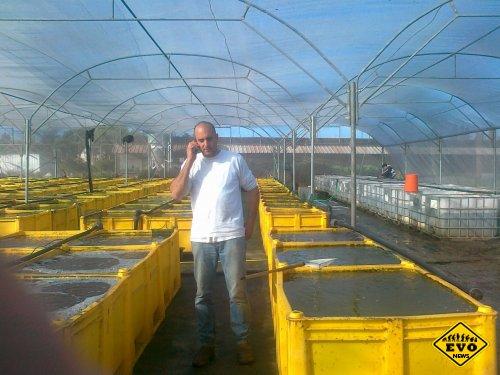 Израильский пластик крепче стали