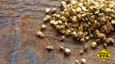 Делфтибактин — вещество выделяющее золото из морской воды