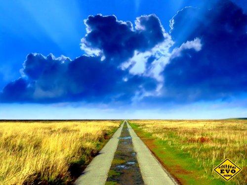 Дорога в никуда