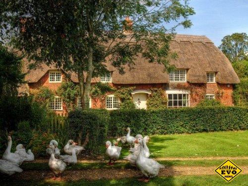 Сказочные домики Англии (Интересные фото)
