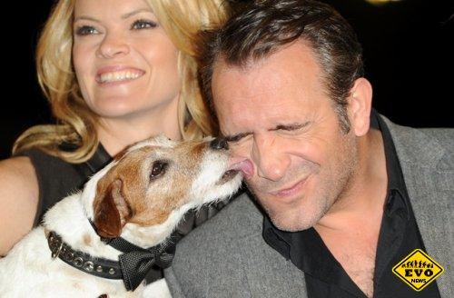 Терьер Угги стал собакой с двумя «Оскарами»
