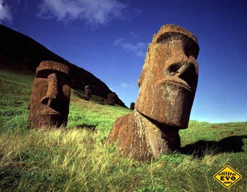 Кто возвел статуи моаи? (Интересная статья)