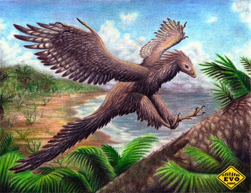 Современные птицы произошли от динозавров