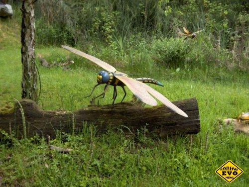Огромные размеры доисторических насекомых