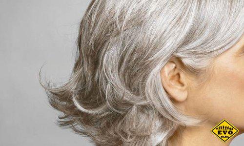 Почему волосы седеют? (Интересный факт)