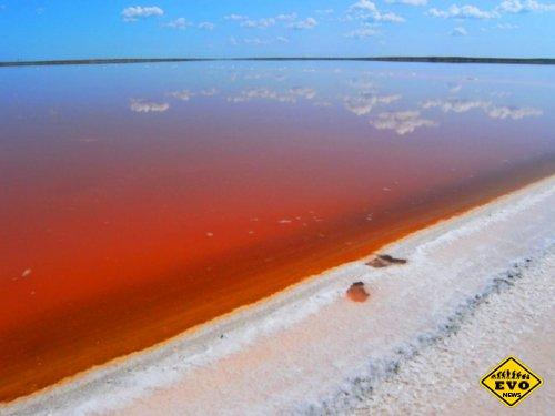 Каких цветов встречается соль в природе?