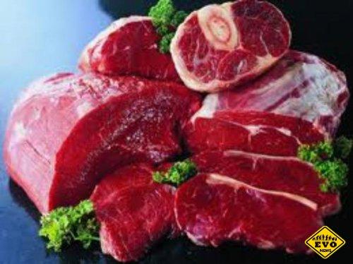 Почему нельзя есть сырое мясо? (Интересные факты)