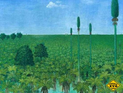 Китайцам удалось реконструировать древний лес