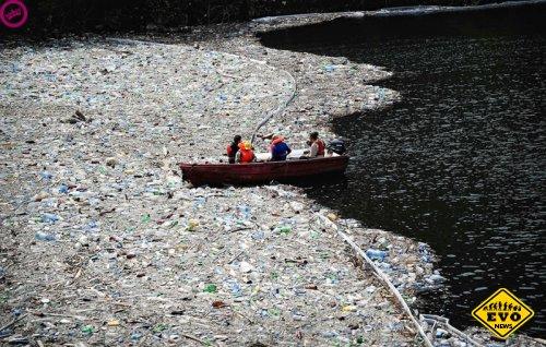 Переработка Великого тихоокеанского мусорного пятна