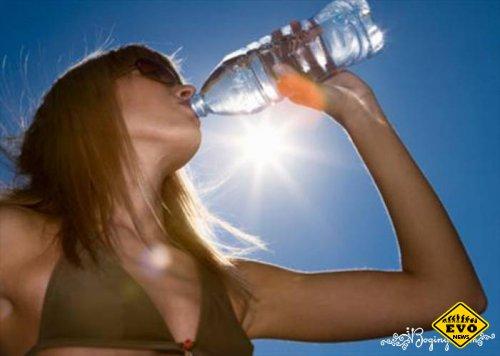 Что пить в жаркий период?