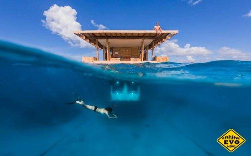 Подводный мир из окон отеля