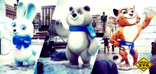 Факты об Олимпиаде в Сочи