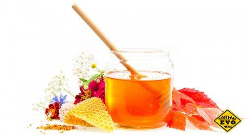 Пыльца и мед – лучшие из лекарств для детей