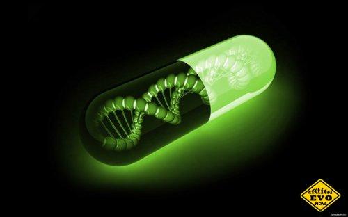 Способ хранения данных на ДНК в течение миллионов лет