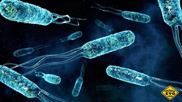 9 самых приятных симптомов смертельных заболеваний