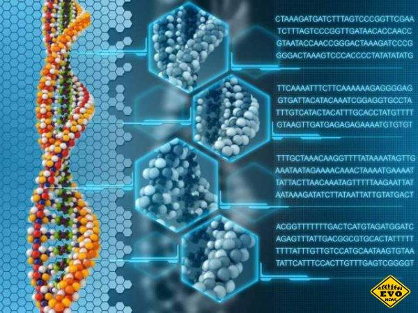 Коллекция генетических ошибок в фотографиях