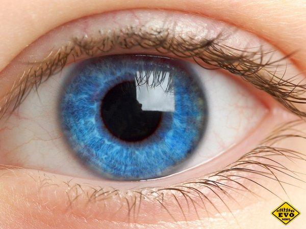 Невероятная чувствительность человеческого глаза