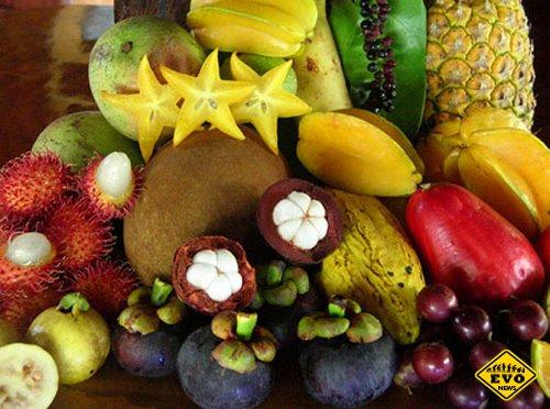 Мало известные экзотических фруктов со всего света