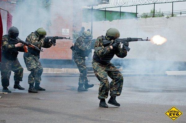 Основы стрельбы из АК-47 и краткая теория для новичка