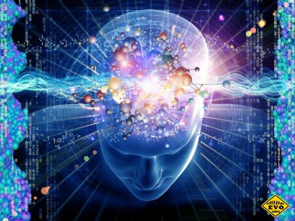 Ментальные ловушки нашего ума