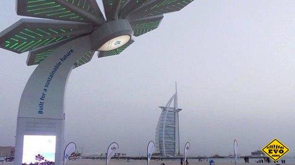 В Дубае устанавливают пальмы с солнечными панелями и Wi-Fi