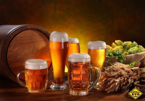 10 интересных фактов про пиво