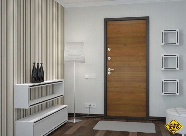 правильный выбор входной двери