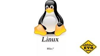 Хостинг для сайтов на Linux