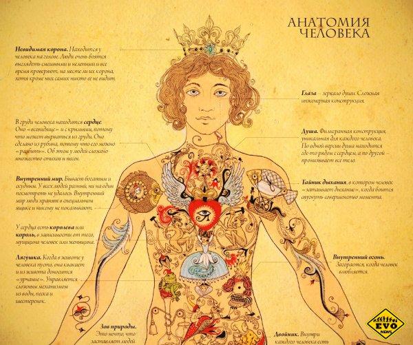 Причины почему болят каждый из органов тела