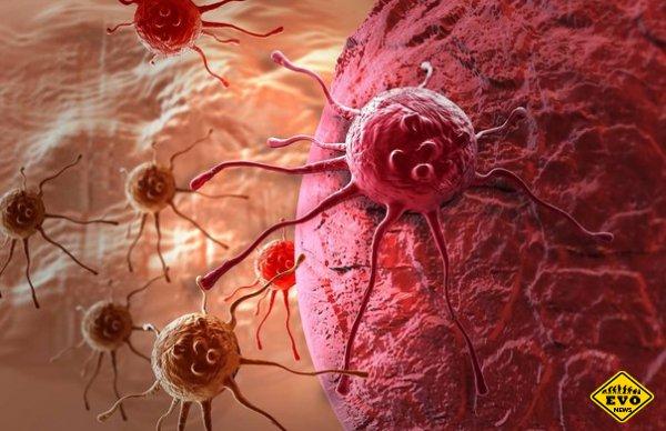 Создан новый эффективный способ противодействия раку