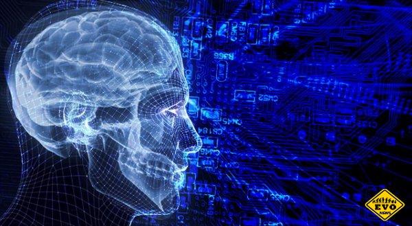 Эти 5 фактов о мозге изменят вашу жизнь