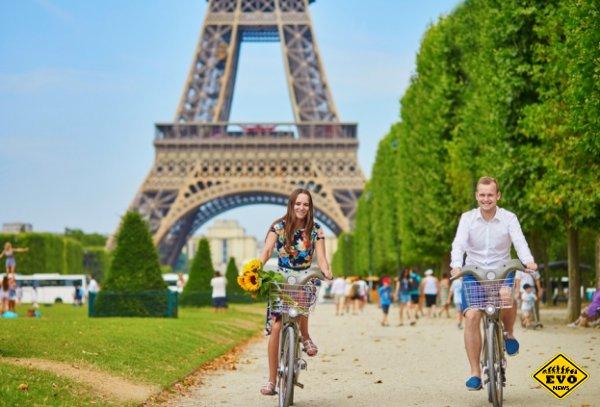 Секрет здоровья сердечно-сосудистой системы, или Что такое французский парадокс?