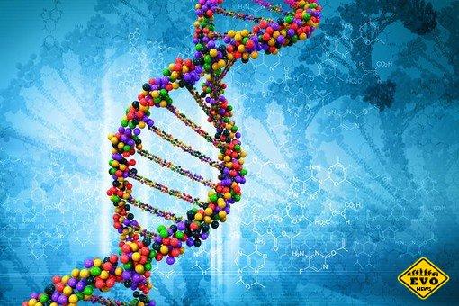 Ген: самая мощная и опасная тема в истории науки