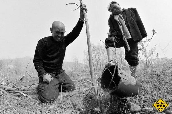 12 лет сажают деревья вокруг своего села